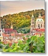 Vineyard Of Prague Metal Print