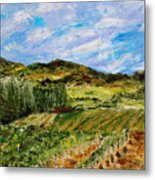 Vineyard Solitude Metal Print