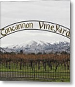 Vineyard Under Snow Metal Print