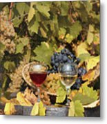 Vineyard With Red And White Wine Autumn Season Metal Print
