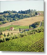 Vineyards With Stone House, Tuscany, Italy Metal Print