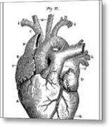 Vintage Anatomical Heart Metal Print