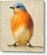 Vintage Bluebird Metal Print