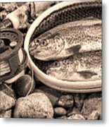 Vintage Concept Of Fly Reel And Pole With Trout In Net  Metal Print