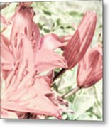 Vintage Lilly Delight Metal Print