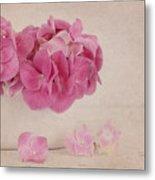 Vintage Pink Hydrangea Metal Print