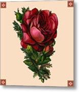 Vintage Red Rose Botanical Metal Print