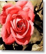 Vintage Rose 02 Metal Print