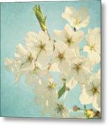 Vintage Spring Blossoms Metal Print