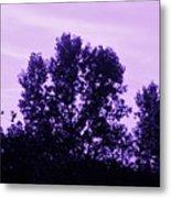 Violet And Black Trees  Metal Print