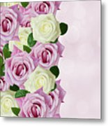 Violet  And White Roses Metal Print