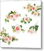 Graden Roses Metal Print