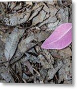 Violet Leaf On The Ground  Metal Print