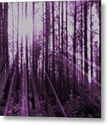 Violet Rays Metal Print