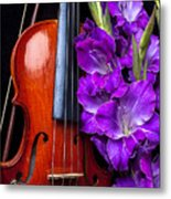 Violin And Purple Glads Metal Print by Garry Gay