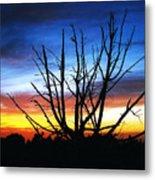 Virden Road Sunset Metal Print