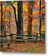 Virginia Country Roads - A Seat With A View - Autumn Colorfest No. 1 Near Mabry Mill - Floyd County Metal Print