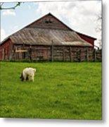 Virginia Farmyard Metal Print