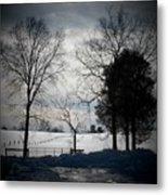 Virginia Snow Metal Print by Joyce Kimble Smith