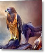 Vision Of The Hawk 2 Metal Print