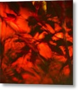 Visions Of The Forest Floor Metal Print