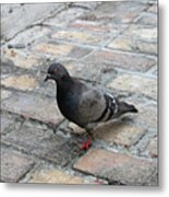 Visiting The Old City Metal Print