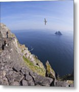 Visitors Admire Celtic Monastery, Skellig Michael, Looking To Little Skellig, County Kerry, Ireland  Metal Print