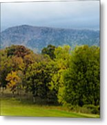 Vista Links Metal Print