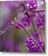 Vivid Beauty Berries Metal Print