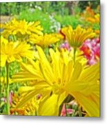 Vivid Colorful Yellow Daisy Flowers Daisies Baslee Troutman Metal Print