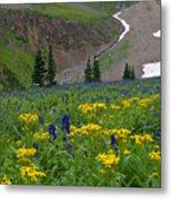 Vivid Colors Of The Colorado Alpine Metal Print