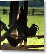 Voice Of The Farm Metal Print