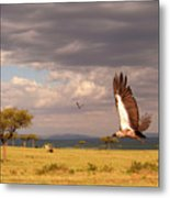 Vulture On The Mara Metal Print