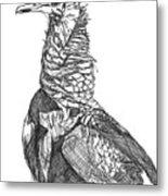 Vulture Sketch Metal Print