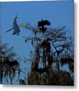 Vultures And The Witch Metal Print