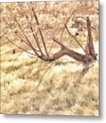 W Is For The Woods Metal Print