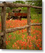 Wagon In Paintbrush - Texas Wildflowers Wagon Fence Landscape Flowers Metal Print