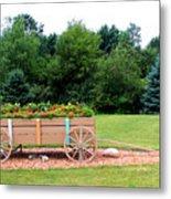 Wagon With Flowers Metal Print