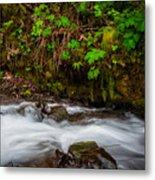 Wahkenna Creek Metal Print