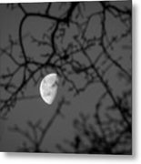Waning Black And White Metal Print