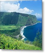 Waipio Valley Lookou Metal Print