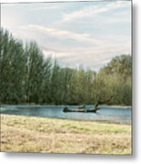 Waiting For The Birds Metal Print