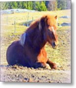Waiting For The Green Grass To Grow Around My Bed  Metal Print