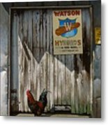 Waiting For Watson Metal Print by Doug Strickland