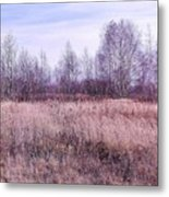 Waiting For Winter Metal Print