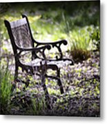 Waiting For You Metal Print