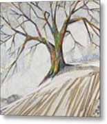 Waiting Out Winter Metal Print
