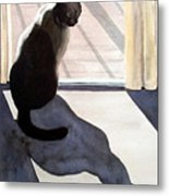Waiting To Go Out Metal Print