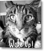 Wake Up It's Your Birthday Cat- Art By Linda Woods Metal Print
