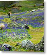 Walk Among The Bluebells Metal Print